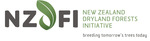 NZDFI Main Logo